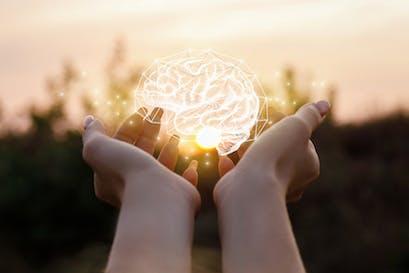 Fosfolipidi: il modo intelligente che hai per sostenere il cervello