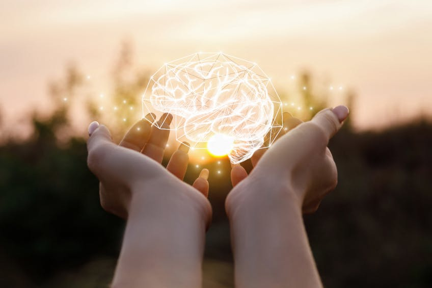 Phospholipide: Die intelligente Art, Ihr Gehirn zu unterstützen