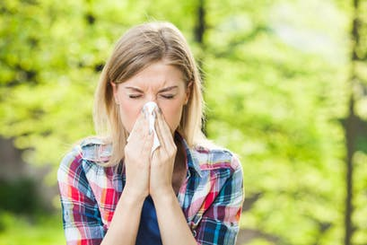 Sensibilisation aux allergies