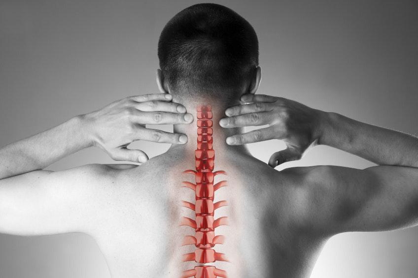 Por qué el magnesio y la vitamina D son tan importantes como el calcio para el soporte nutricional de los huesos...