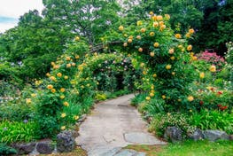 Healing Gardens, i Giardini Terapeutici