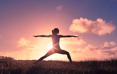 Setzen Sie Ihr Immunsystem Zurück Und Verlieren Sie Gewicht Mit Dem 5C Reset